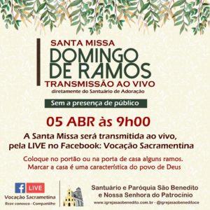 Celebração do Domingo de Ramos com transmissão ao vivo, sem a presença de público, dia 05/04. Participe!